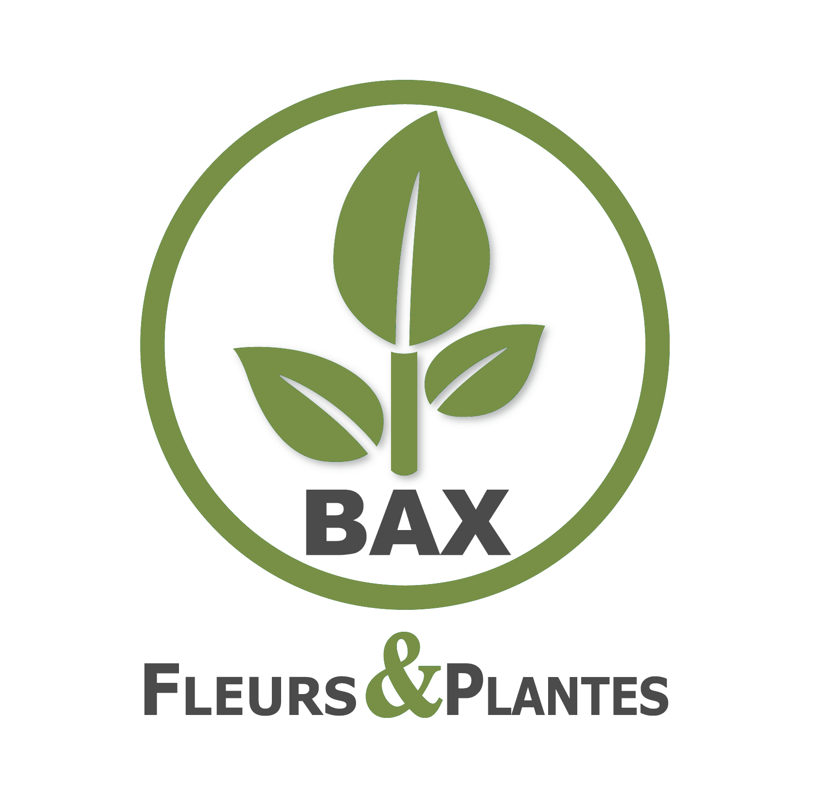 003_bax_fleurs_et_plantes